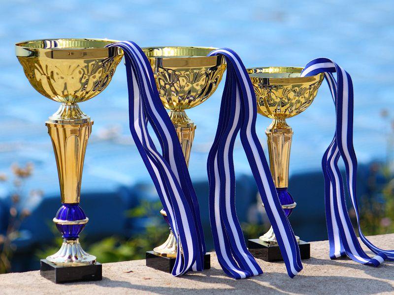 Чемпионат Владимирской области по волейболу